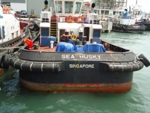 Fleet-SeaHusky-04