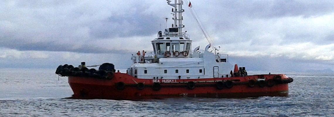 Fleet-SeaHusky