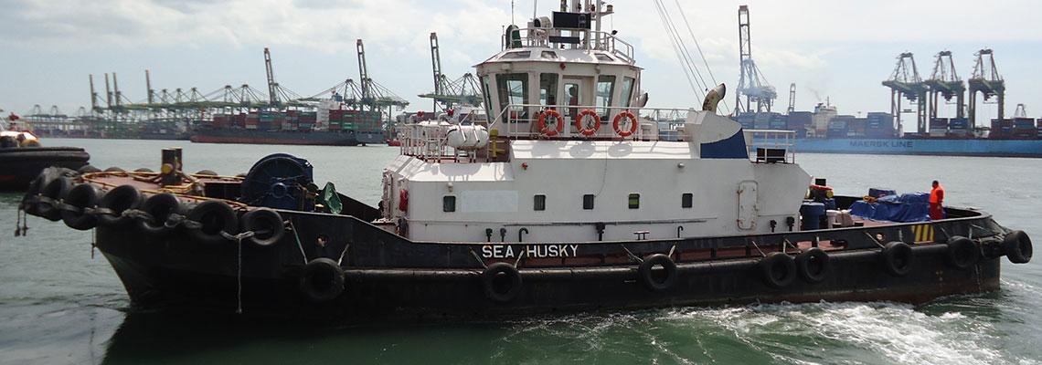 Fleet-SeaHusky2