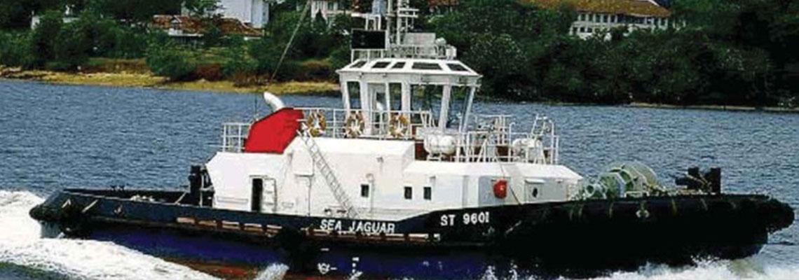Fleet-SeaJaguar
